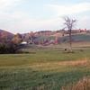 Vermont Grasses