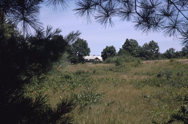 Garrigan home is still visible in the distance.