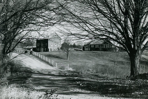 A portrait of the Garrigan home in Fall black and white