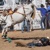 Cowboy flies off bronco at Cave Creek Rodeo 30 March 2014