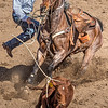 Cowboy ropes calf Cave Creek Rodeo 30 March 2014