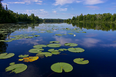 Black Lake in the Chequamegon-Nicollet National Forest.