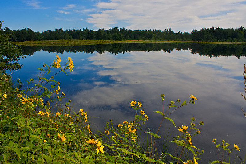 Pigeon Creek Flowage Black River State Forest Wisconsin.