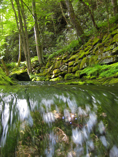 Little River..Elkmont..Great Smoky Mountains National Park