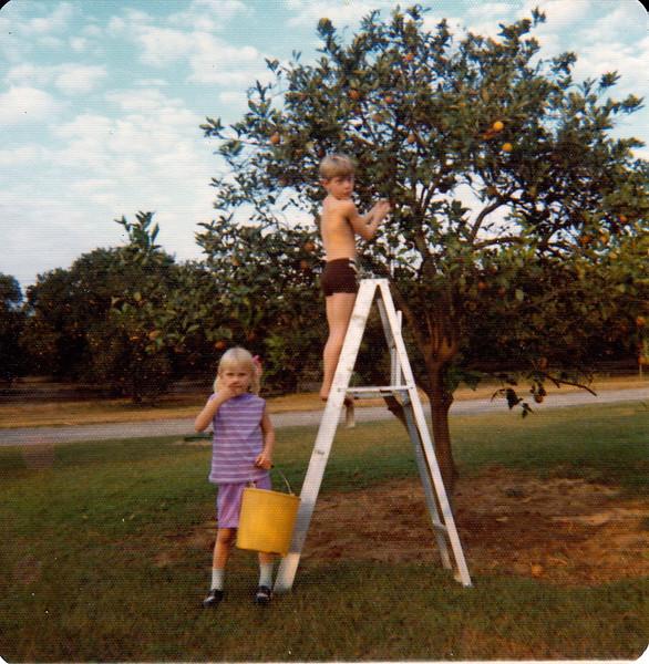 Jim picking oranges and Dawn holding pail