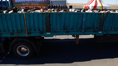 """2020 оны аравдугаар сарын 22. Монгол Улсын Ерөнхийлөгч Х.Баттулга 2020 оны 02 дугаар сарын 27-ны өдөр БНХАУ-д хийсэн айлчлалынхаа үеэр цар тахлыг таслан зогсооход дэмжлэг үзүүлэхээр 30 мянган толгой хонийг хандивласан. Үүний дагуу Ерөнхий сайдын захирамжаар хандивын 30 мянган хонийг хүлээлгэн өгөх Ажлын хэсгийг Хүнс, хөдөө аж ахуй, хөнгөн үйлдвэрийн сайд З.Мэндсайханаар ахлуулж, 2020 оны 08 дугаар сарын 05-ны өдөр байгуулсан юм.  Монголын ард түмнээс өмнөд хөршдөө хандивласан 30 мянган хонийг нэгбүрчлэн мал эмнэлгийн үзлэг шинжилгээнд хамруулж, бүх шатанд хяналт тавьж баталгаажуулан дэлгэрэнгүй бүртгэл үйлдэж БНХАУ-ын талд өнөөдөр бүрэн хүлээлгэн өглөө. Уг арга хэмжээний үеэр ХХААХҮ-ийн сайд З.Мэндсайхан хэлэхдээ """"Монгол Улсаас өгч буй хандив БНХАУ-ын ард түмэн цаг үеийн хүндрэлийг даван туулахад бодитой дэмжлэг болно гэдэгт итгэлтэй байна. Энэ ажлыг шуурхай, үр дүнтэй зохион байгуулахад дэмжиж тусалсан Монгол Улсын Ерөнхийлөгчийн Тамгын газар, Төрийн болон орон нутгийн засаг захиргааны байгууллага, хувийн хэвшлийн аж ахуйн нэгжүүд, иргэд, малчид Та бүхэнд чин сэтгэлийн талархал илэрхийлье. Монголын ард түмний сэтгэлийн хандив 30 мянган толгой хонийг хүлээлгэн өгөх ажлыг амжилттай зохион байгууллаа.  Хоёр орны ард түмнүүдийн найрсаг харилцаа батжин хөгжих болтугай"""" гэв. Энэхүү арга хэмжээнд ХХААХҮ-ийн сайд З.Мэндсайхан, Ерөнхийлөгчийн Гадаад бодлогын зөвлөх Г.Тэгшжаргал, Гадаад харилцааны дэд сайд Б.Мөнхжин, УИХ дахь Монгол-Хятадын найрамдлын бүлгийн гишүүд, БНХАУ-аас Монгол Улсад суугаа Онц бөгөөд Бүрэн эрхт Элчин сайд Чай Вэньруй болон орон нутаг, малчдын төлөөлөл оролцлоо. БНХАУ-д хүлээлгэн өгсөн 30 мянган толгой хонийг Хэнтий, Сүхбаатар, Дорноговь аймгийн малчдаас худалдан авч бүрдүүлжээ."""