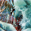 Feb 6 - Ice Abstract #1 - this is an image of ice forming from a culvert under a road.  The bluer ice in the foreground was formed from the splashes of the water flowing from the drainage pipe.  I like the ice crystals on that formation.  The flowing water had partially frozen forming a smoother texture in the background.  I increased the image's color saturation to bring out color in the ice.  You can view the same image in black and white in my black and white gallery(link: http://jmannimages.smugmug.com/Photography/Black-and-White/27614881_rxCPrd#!i=2347500822&k=Bk5G9Dd )  I haven't decided which one I like better.