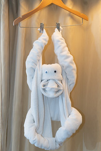 JoCo2020_Day_1_Towel_Monkey