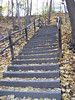 Steps up to campus