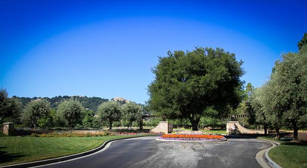 1275 Lions Peak Lane, Corde Valley, San Martin