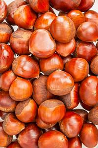 Chestnut on the white background