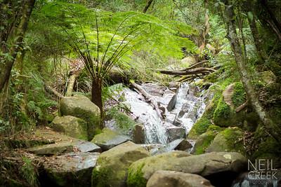 creek-120416-002