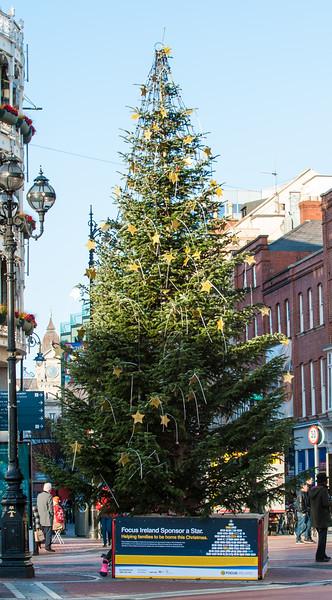 Focus Ireland Christmas Tree