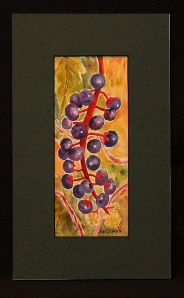 Elderberries 3 5x8 5
