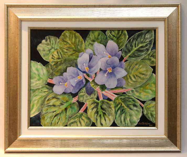 African Violets 10x13