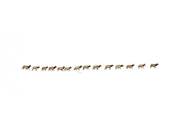Elk Train