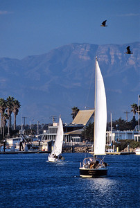 Sailboats Call it day at the Channel Islands Harbor
