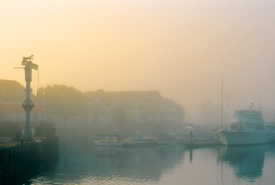 Foggy Morning at Fisherman's Wharf at the Channel Islands Harbor