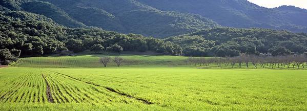 Ojai ranch adj