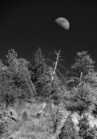 Rocky Mountain Moon Rise, Colorado