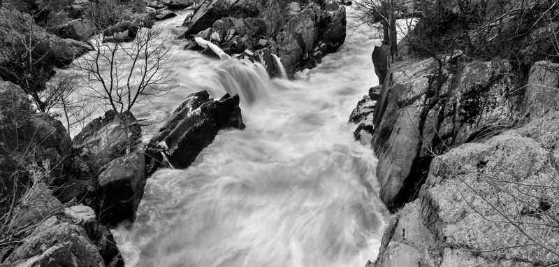 Potomac River, March 2014