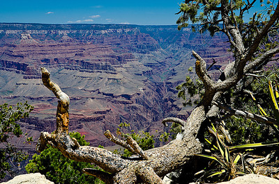 Grand Canyon, South