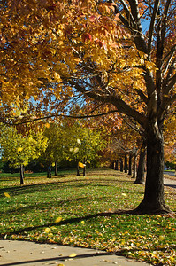 Denver, Colorado Fall in Denver, Colorado