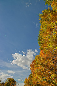Fall in Denver, Colorado