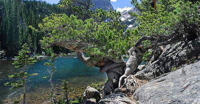 Dream Lake, Rocky Mountain Nat. Park