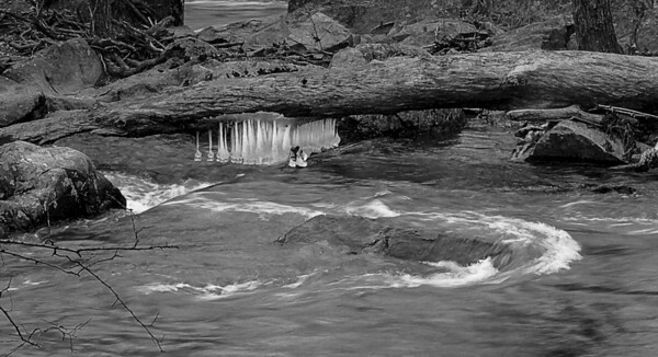 Walking along the Potomac River in Maryland: March 1, 2014