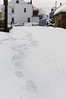Feb 9, 2013.  This is our road before the front loader came.  The foot prints are mine, as I walked down the road to take pictures.