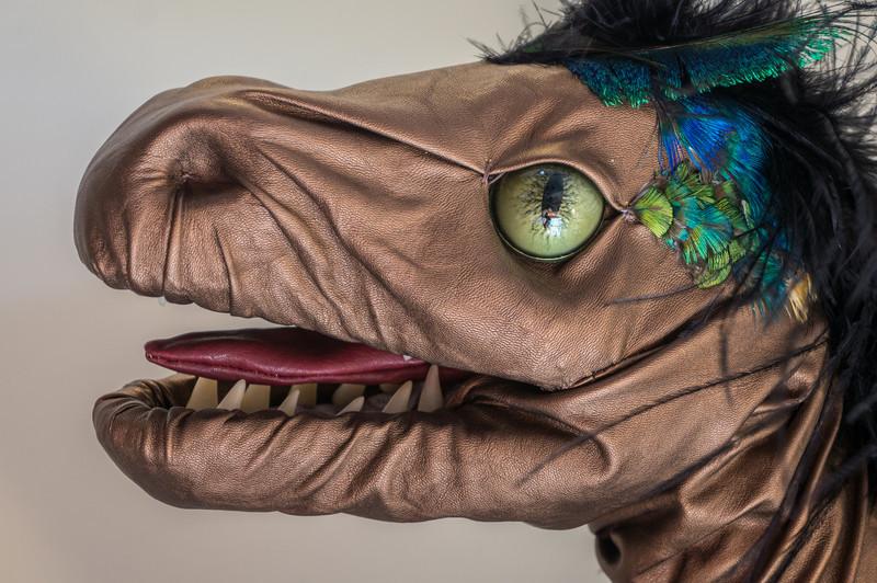Cyd's Dragon - Close up of head