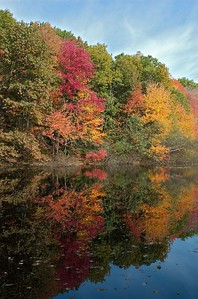 Fall leaves reflected in pond at Whipple Hill   (Oct 17, 2004, 11:28am)