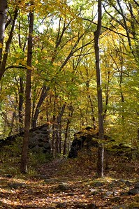 Fall colors in Prospect Hill Park   (Oct 18, 2004, 3:09pm)  The next day I sent to Prospect Hill Park, in Waltham, MA.  Prospect Hill Park is a 250 acre wooded park with a couple of large hills, and an abandoned ski area.  It is also the site of a yearly orienteering meet.I took an hour off from work to visit Prospect Hill Park in the afternoon to see if I could fine any interesting foliage colors.  Unfortunately, the park was mostly yellow and green, with very little red which made for less than exciting pictures.  Daphne thought that this picture was worth keeping.  It shows a pair of ruins that straddle one of the trails (specifically the Boy Scout Trail) under a canopy of seasonal colors.