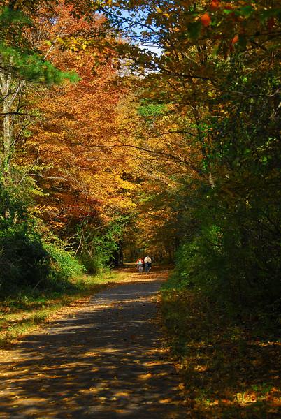 Nashua River Rail Trail in the fall.