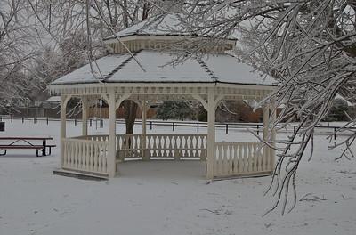 Snowzebo