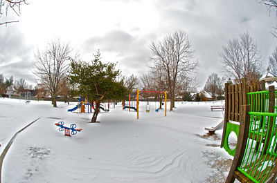 Cat's Park in the Snow