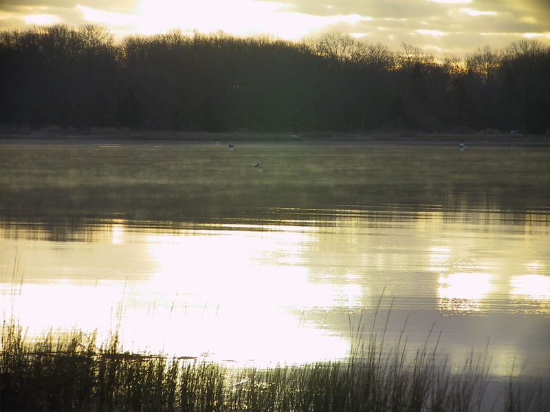 <b>Mists over Fishing Cove of Wickford Harbor</b>   (Feb 10, 2002, 07:17am)