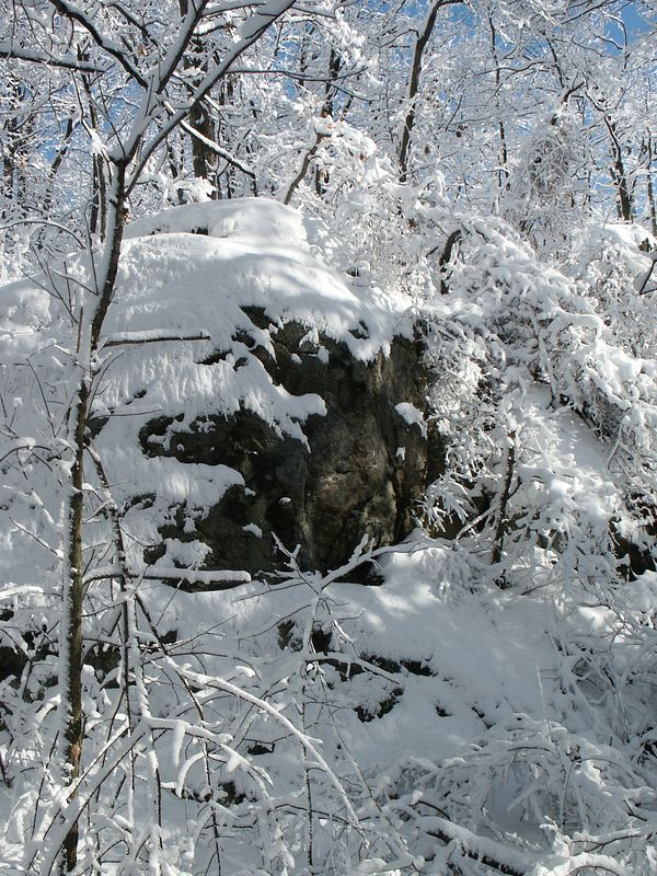 <b>Rock face humbled by a snow fall</b>   (Jan 05, 2003, 11:09am)
