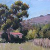 Palos Verdes (David Wolfram's class and photograph, my first oil paintings) 23 Mar 2017