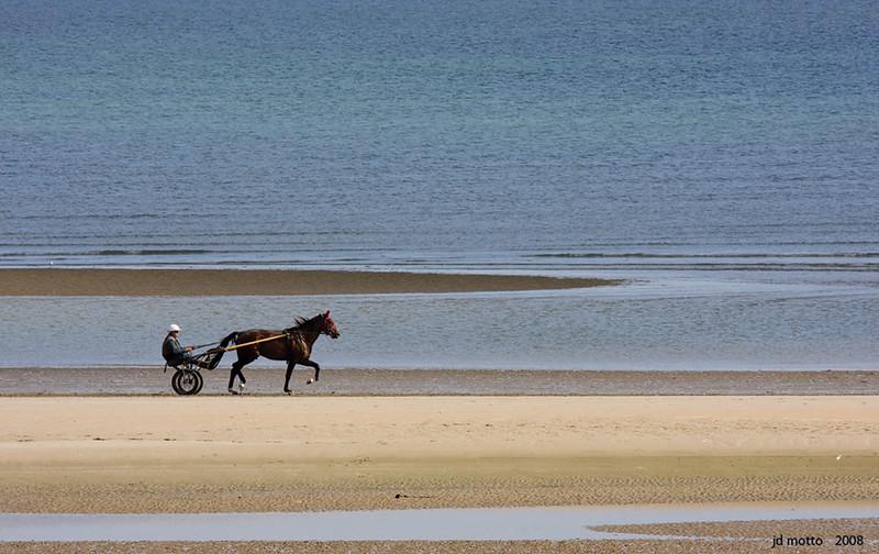 harness racer on omaha beach, normandy, france