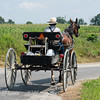 Amish Horse Drawn Buggy