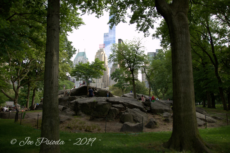Central Park - A View from a Rock