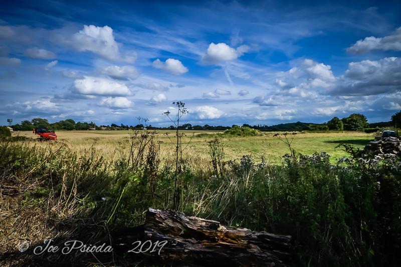 Luton Fields