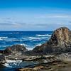 Majestic Seal Rock Oregon