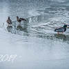 Indian Lake - A Break in the Ice