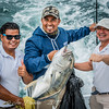 The Jack Crevalle Catch