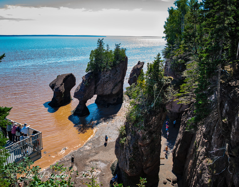 Bay of Fundy on the Return
