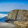 Majestic Seal Rock Oregon