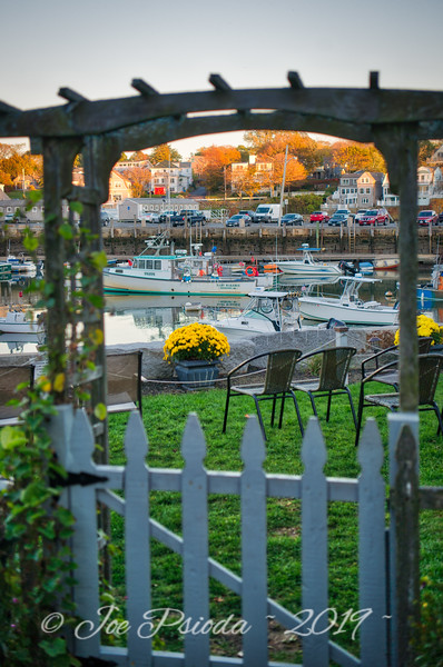 A Garden's View of Rockport Harbor